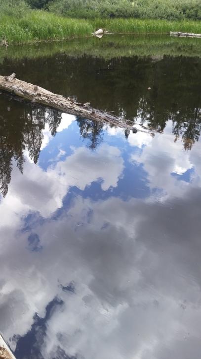 Shirley Lake Reflection