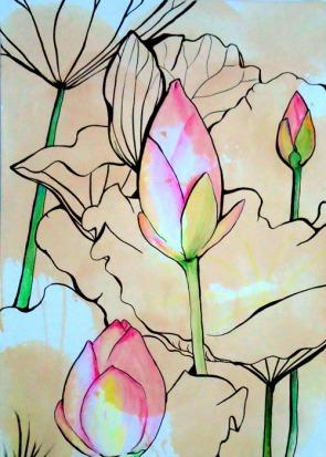 lotus1_web