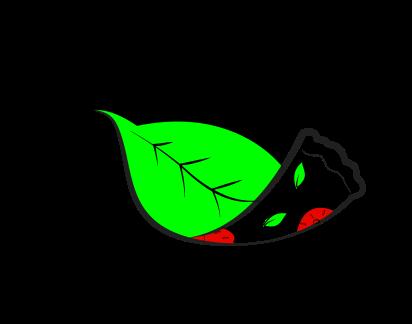 plantbasedpizza_Final
