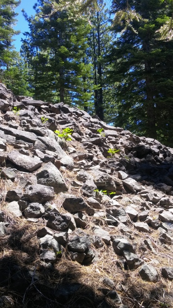 GeologyHike_1