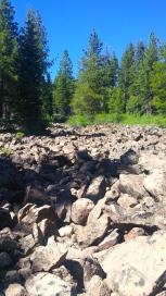 GeologyHike_LavaFlow